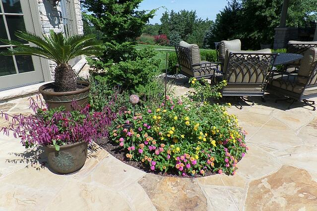 Dowco the best lawn care provider in Chesterfield