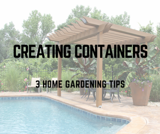 3_CONTAINER_GARDENING_TIPS_TO_ENHANCE_YOUR_ST._LOUIS_HOME_LANDSCAPING.png