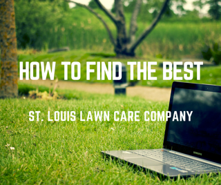 5_Tips_For_Finding_the_Best_Lawn_Care_Company_in_St._Louis.png