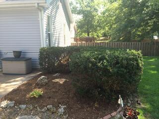 Landscape Cleanup Wildwood MO AFTER