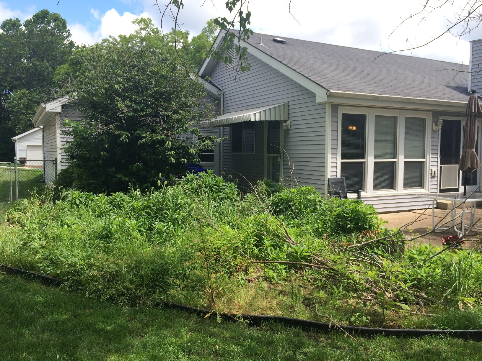 Landscape Cleanup Wildwood MO BEFORE