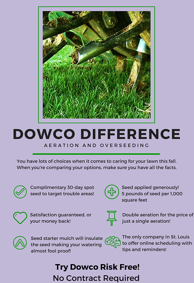 Dowco_Difference_Lawn_Renovations-545342-edited.png