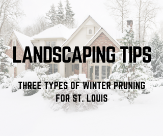 ST._LOUIS_LANDSCAPING_EXPERT_TIPS-_THREE_TYPES_OF_WINTER_TRIMMING_AND_PRUNING.png