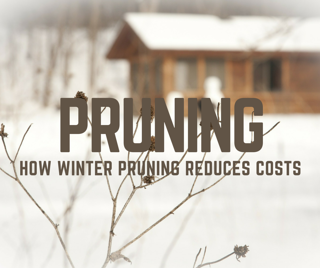 Winter_shrub_pruning_in_St._Louis_MO_Tips.png