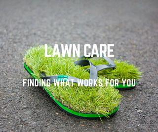 What_St._Louis_Lawn_Care_Program_is_Best_for_Me.png
