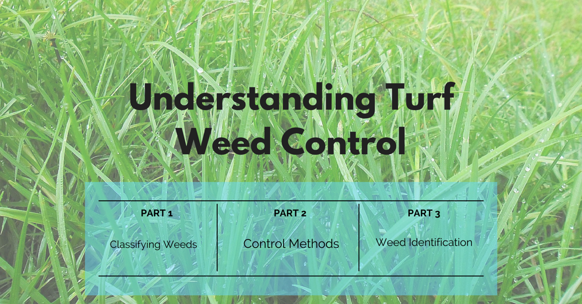 st_louis_lawn_weed_control_service