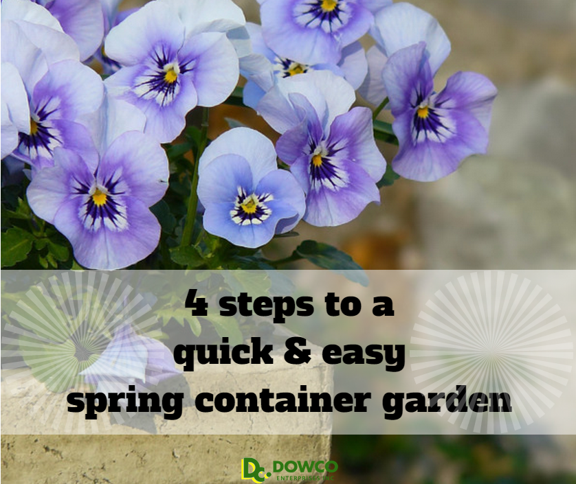 4_steps_to_a_quick_and_easy_spring_container_garden