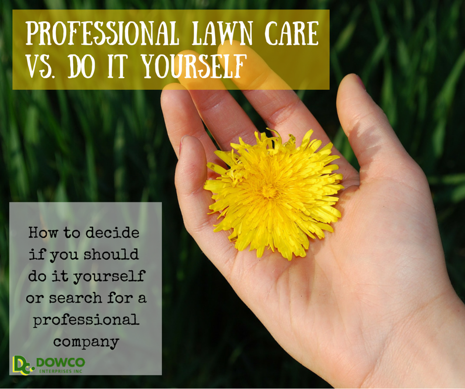 Benefits_of_Lawn_Care_Companies_VS._DIY