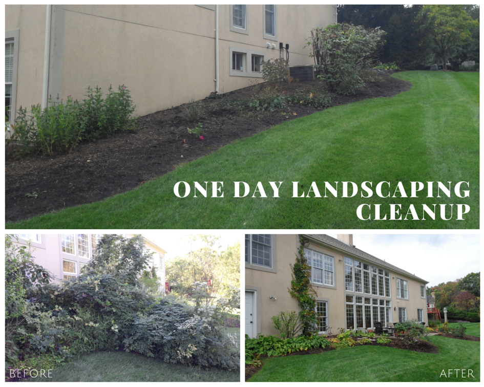 Landscaping Cleanup In Chesterfield