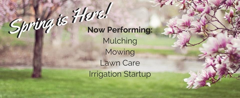 Spring Website Banner