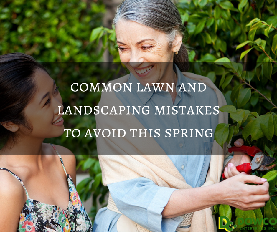 Spring_lawn_and_landscape_mistakes_to_avoid