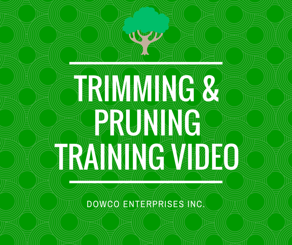 trimming_and_pruning_training_video